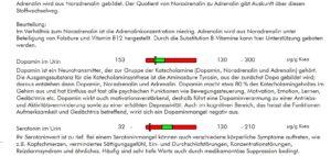 Neurotransmitter 2 Dr. Kerstin Schmit Ganzheitsmedizin