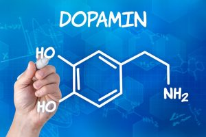 Dopamin Dr. Schmit